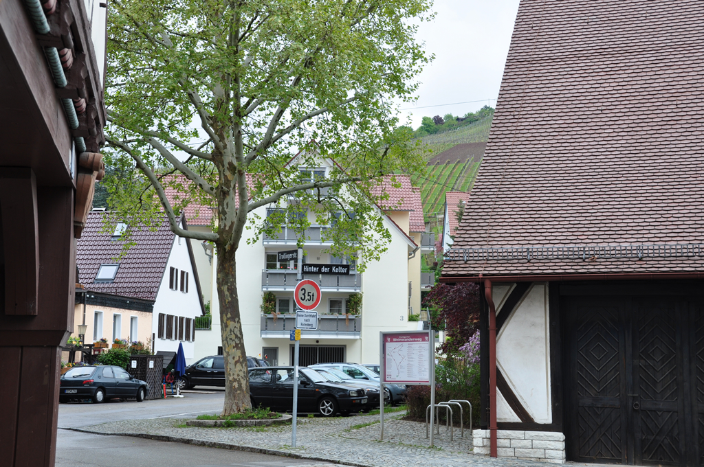 Bild 8: 6-Familien-Wohnhaus